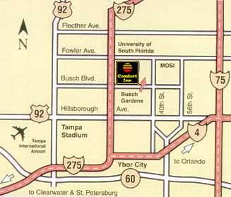 Tampa hotels comfort inn tampa busch gardens tampa florida - Directions to busch gardens tampa florida ...